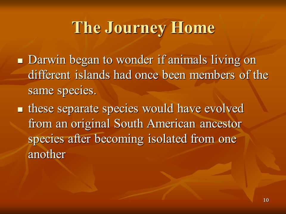 The Journey Home Darwin began to wonder if animals living on different islands had once been members of the same species.
