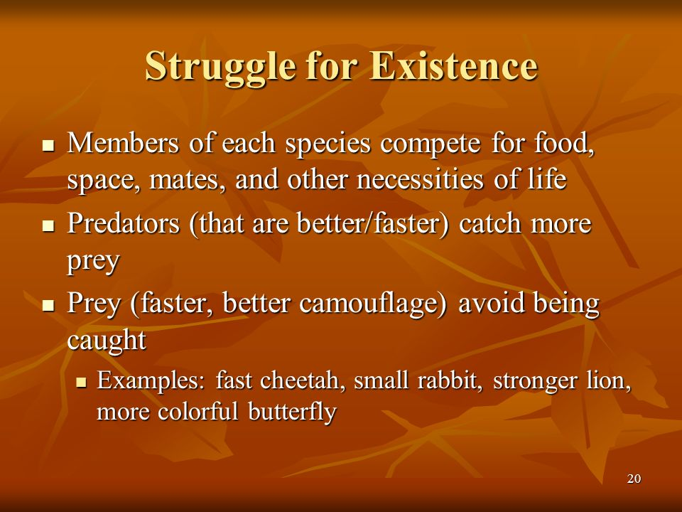 Struggle for Existence