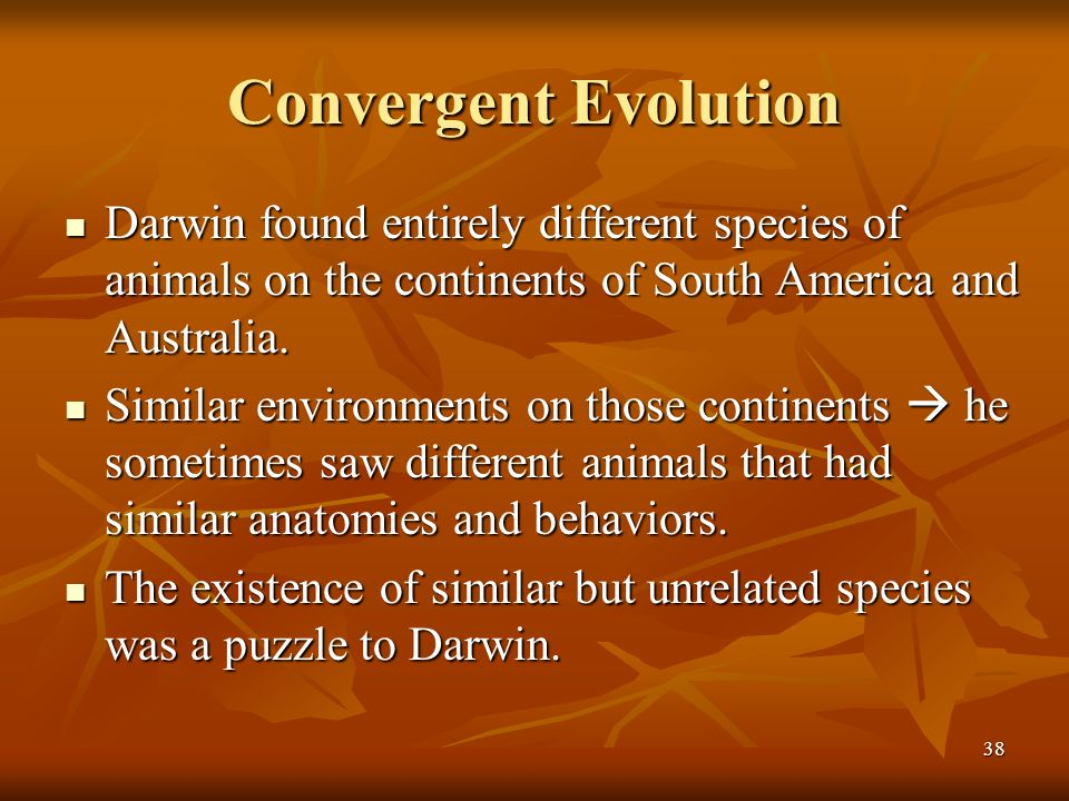 Convergent Evolution Darwin found entirely different species of animals on the continents of South America and Australia.