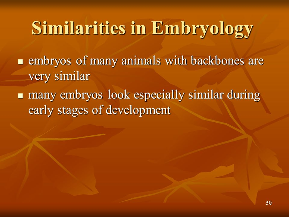 Similarities in Embryology