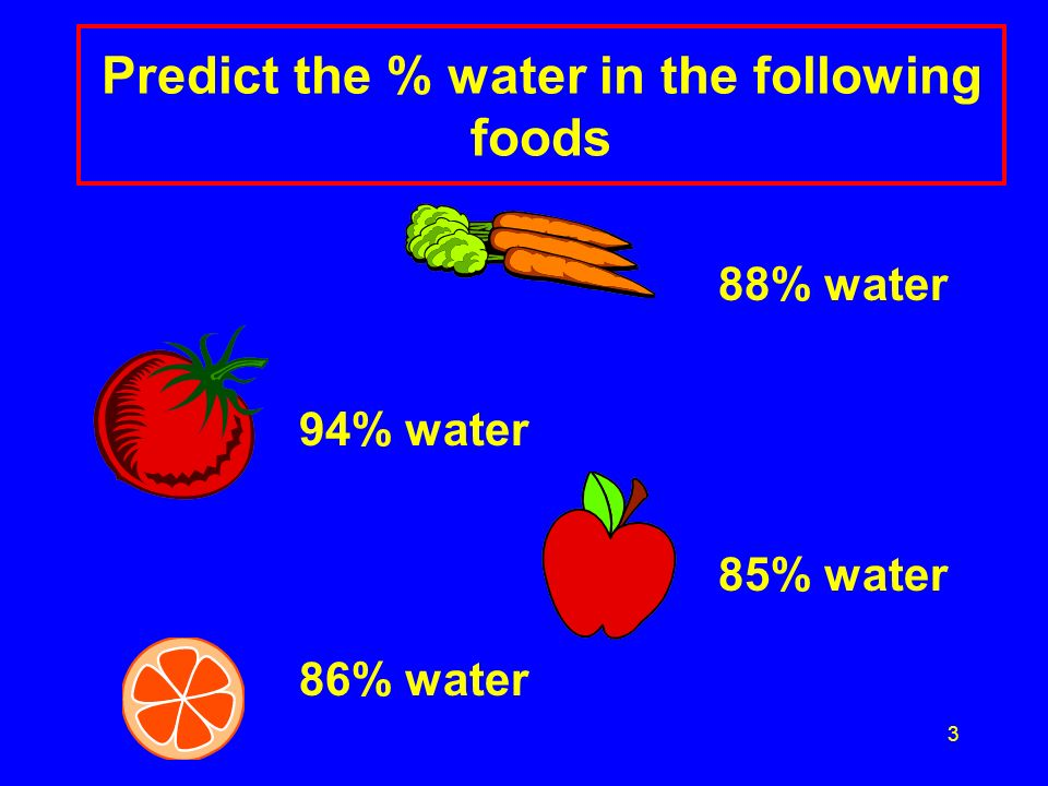 Predict the % water in the following foods