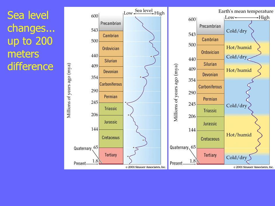 Sea level changes... up to 200 meters difference