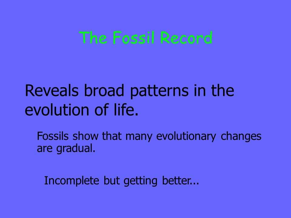 Reveals broad patterns in the evolution of life.
