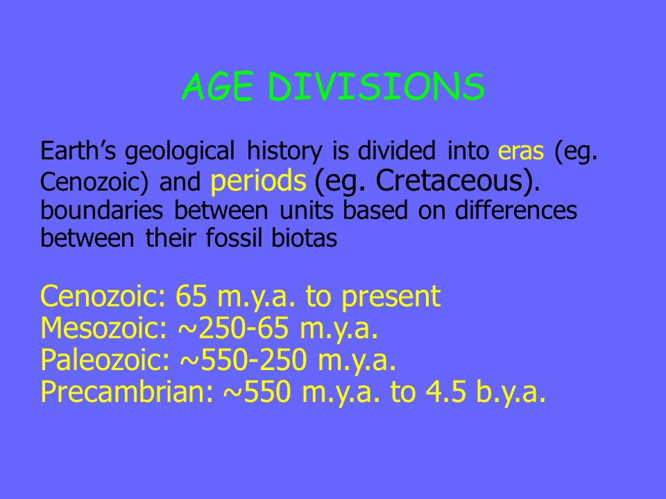 AGE DIVISIONS Cenozoic: 65 m.y.a. to present Mesozoic: ~250-65 m.y.a.