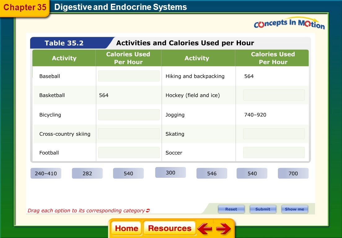 Chapter 35 Digestive and Endocrine Systems