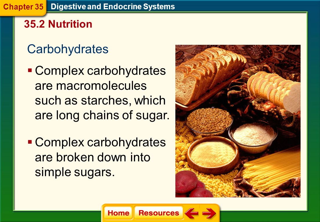 Complex carbohydrates are broken down into simple sugars.