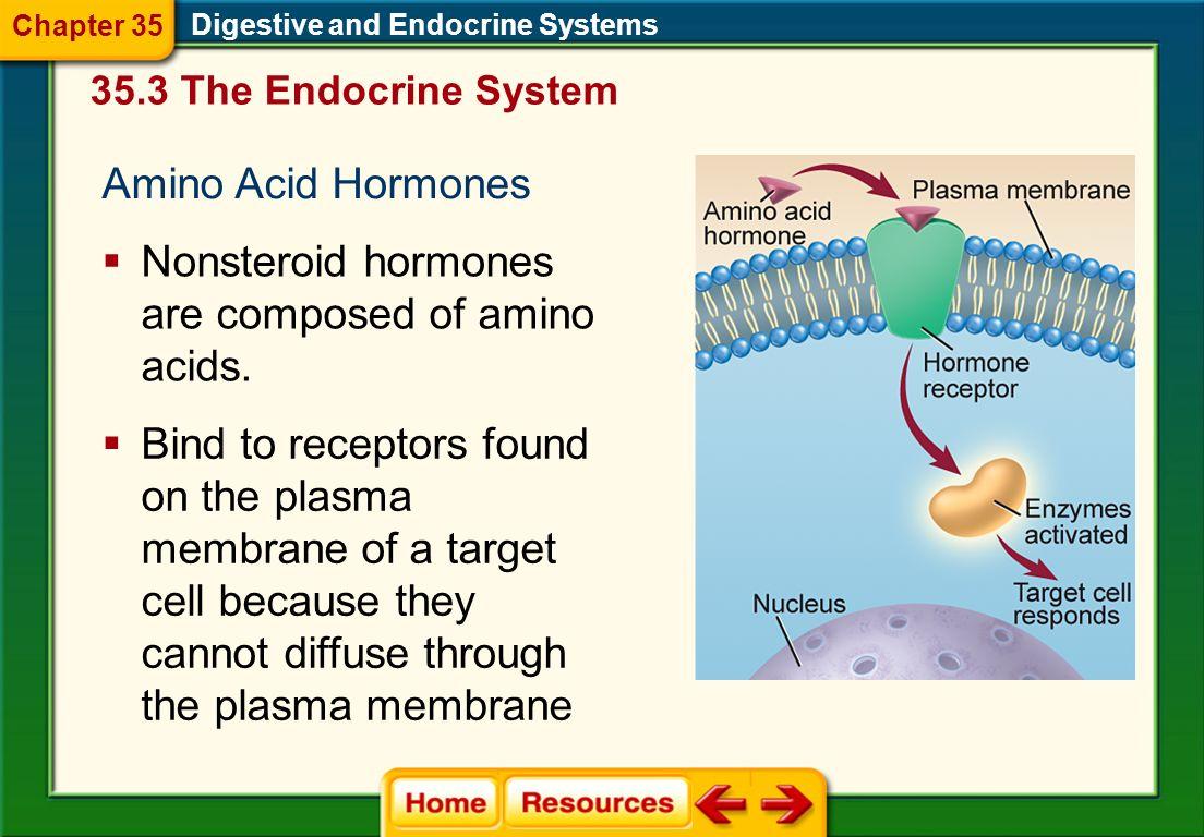 Nonsteroid hormones are composed of amino acids.