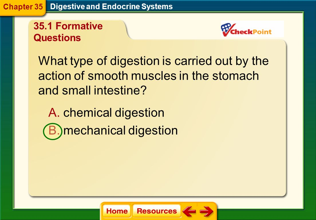 What type of digestion is carried out by the