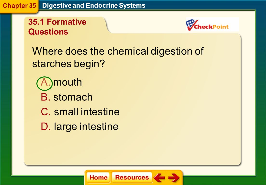 Where does the chemical digestion of starches begin