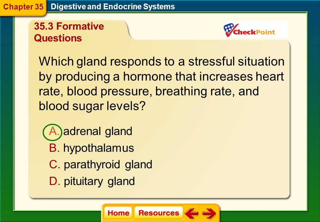 Which gland responds to a stressful situation