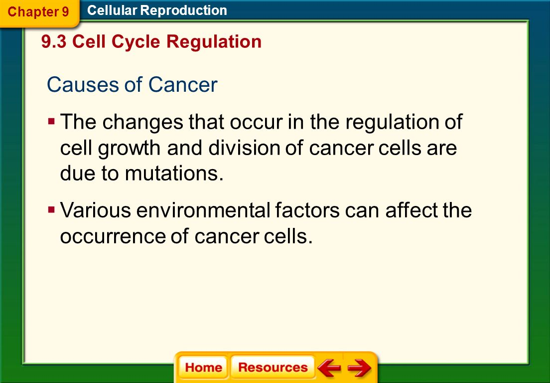 Chapter 9 Cellular Reproduction. 9.3 Cell Cycle Regulation. Causes of Cancer.