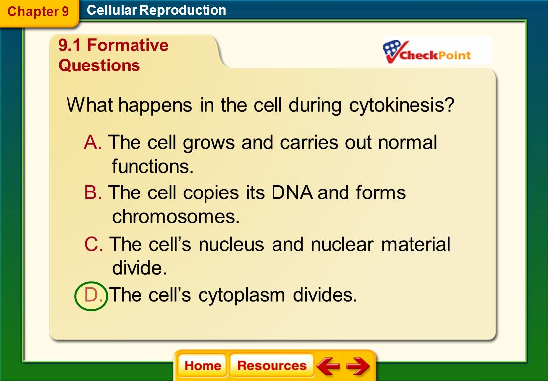 What happens in the cell during cytokinesis