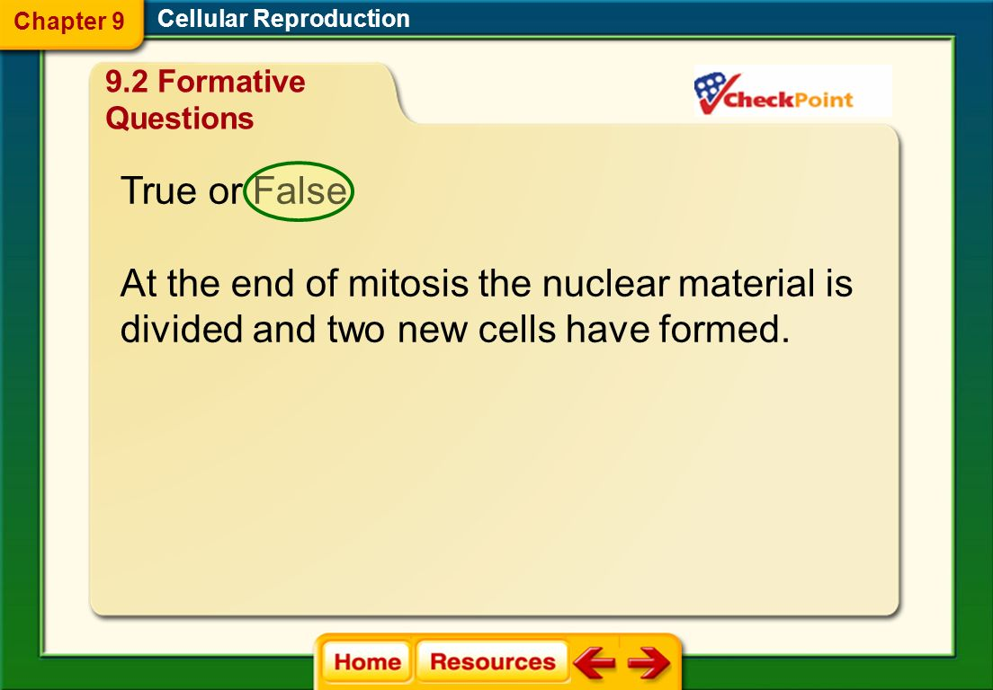 cell life questions and analogies Yesterday's analogy quiz | tomorrow's analogy quiz download poptropica and play for free explore a limitless universe of uncharted islands.