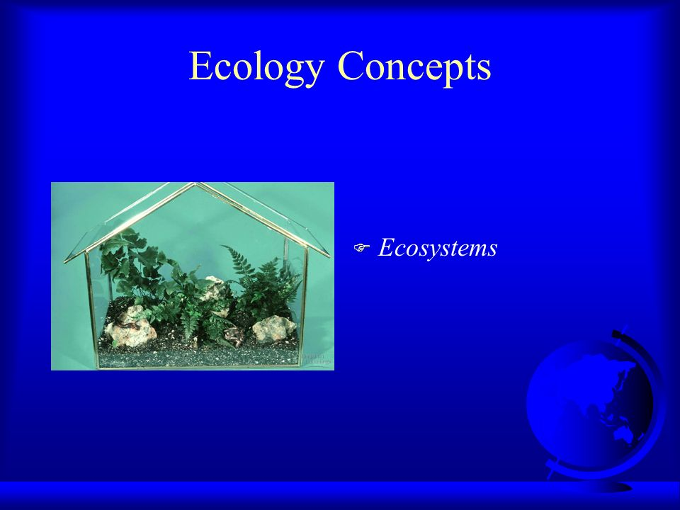 Ecology Concepts Ecosystems