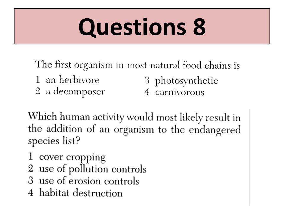 Questions 8 Questions 7 and 8