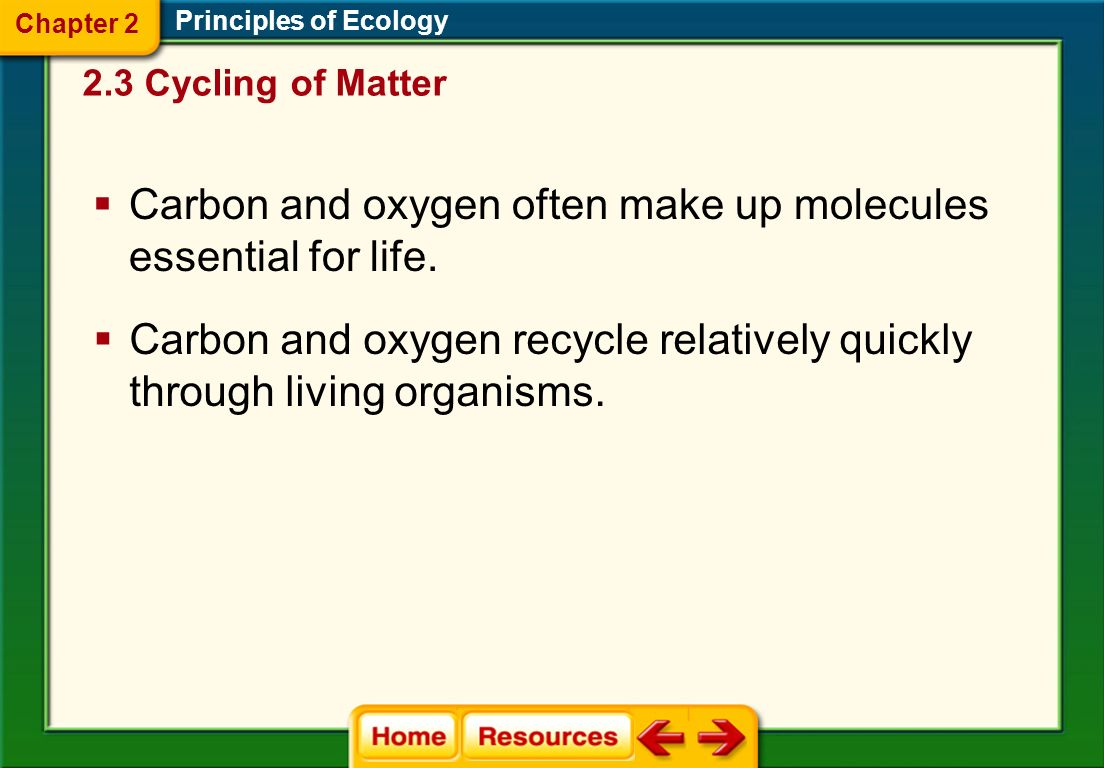 Carbon and oxygen often make up molecules essential for life.