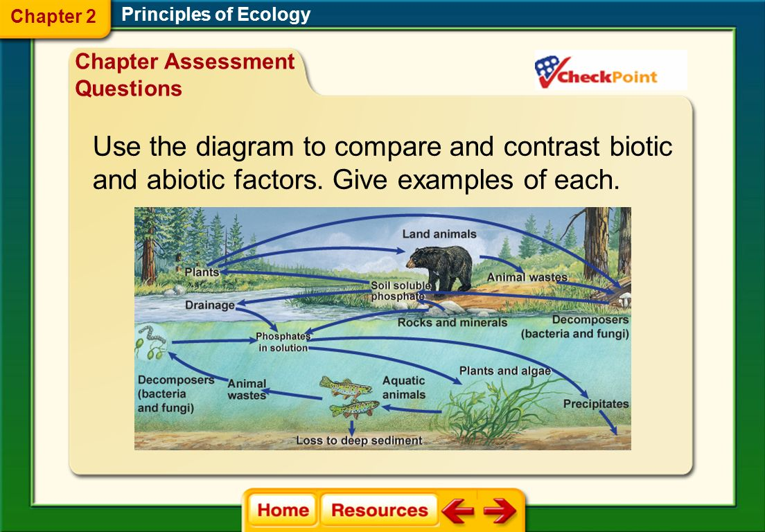 Use the diagram to compare and contrast biotic