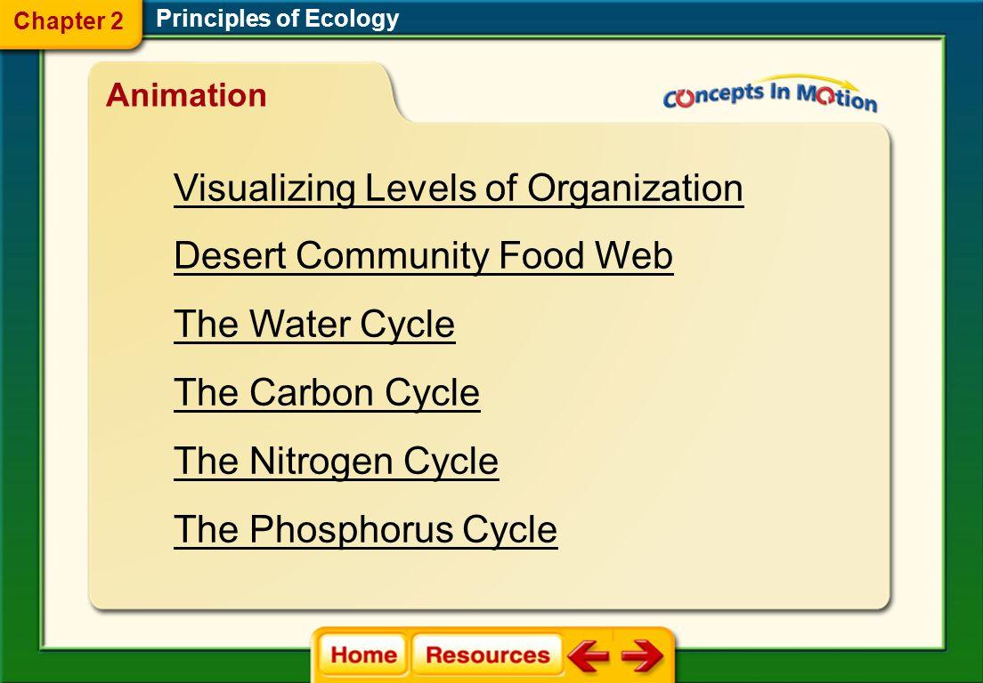 Visualizing Levels of Organization Desert Community Food Web