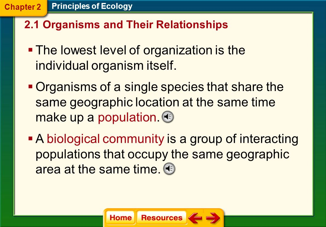 The lowest level of organization is the individual organism itself.