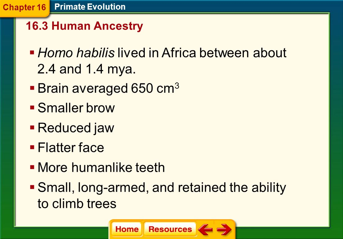 Homo habilis lived in Africa between about 2.4 and 1.4 mya.