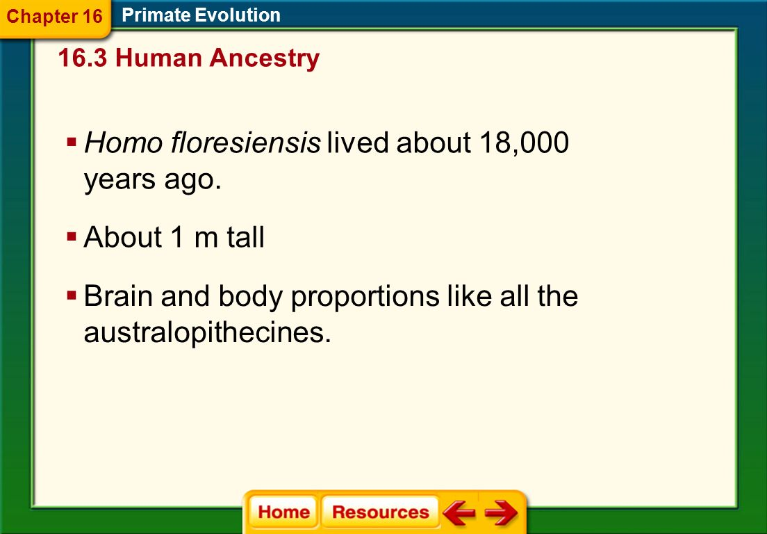 Homo floresiensis lived about 18,000 years ago.
