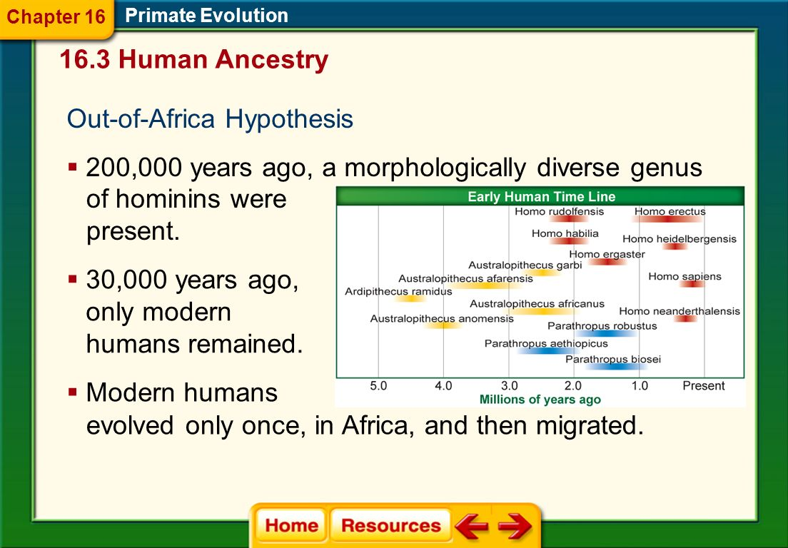 Out-of-Africa Hypothesis
