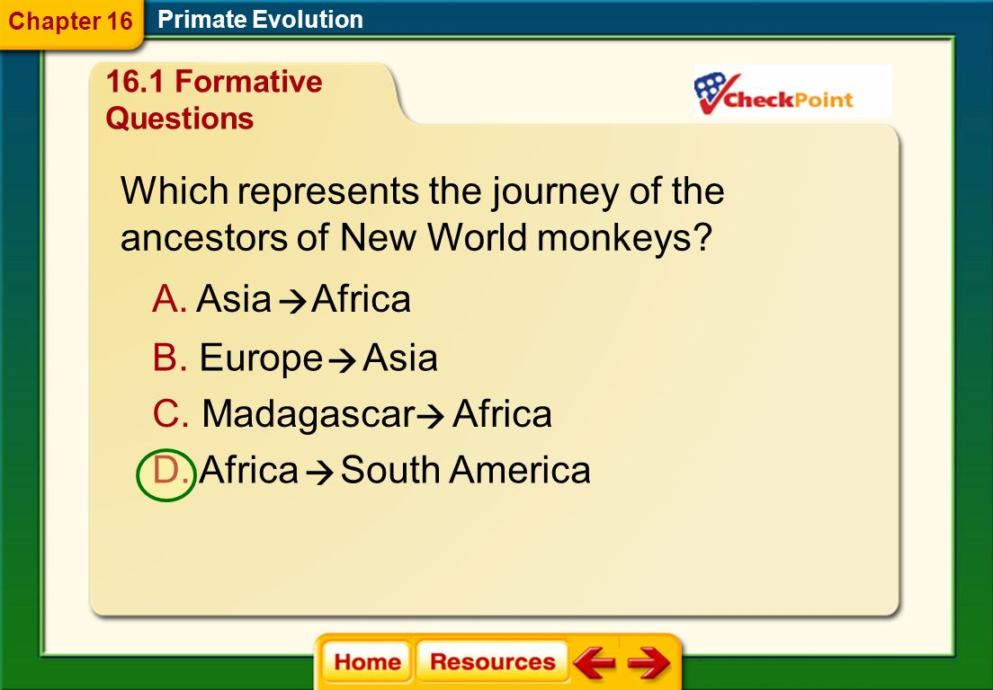 Which represents the journey of the ancestors of New World monkeys