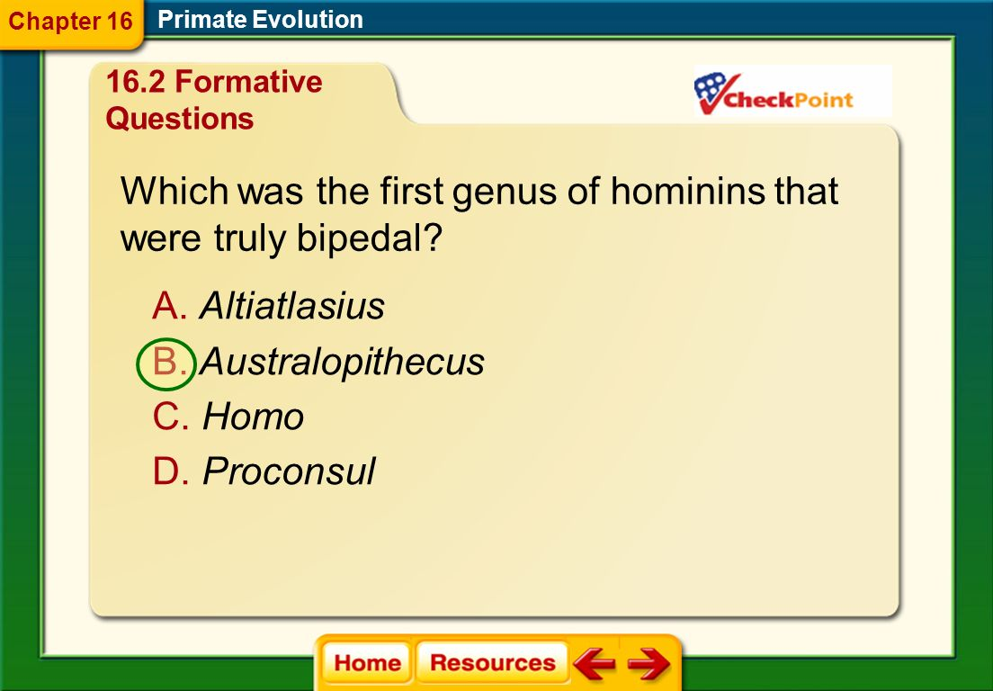 Which was the first genus of hominins that were truly bipedal