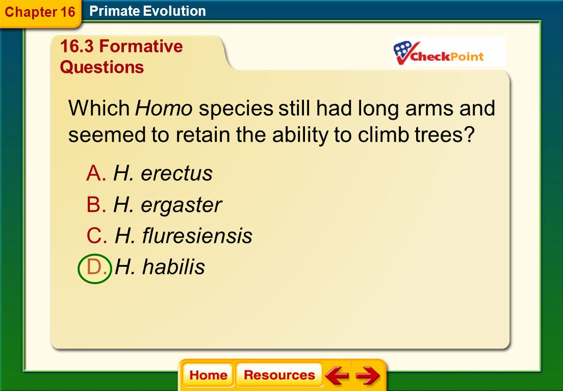 Which Homo species still had long arms and