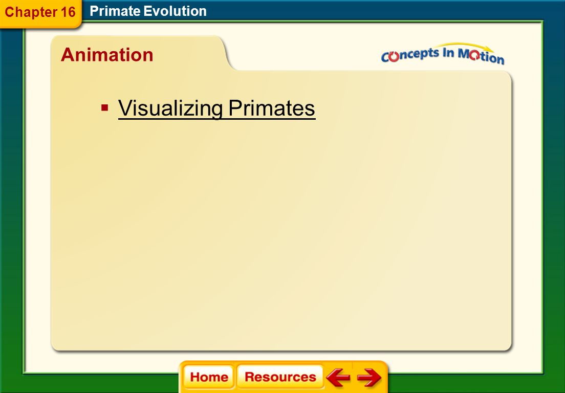 Chapter 16 Primate Evolution Animation Visualizing Primates