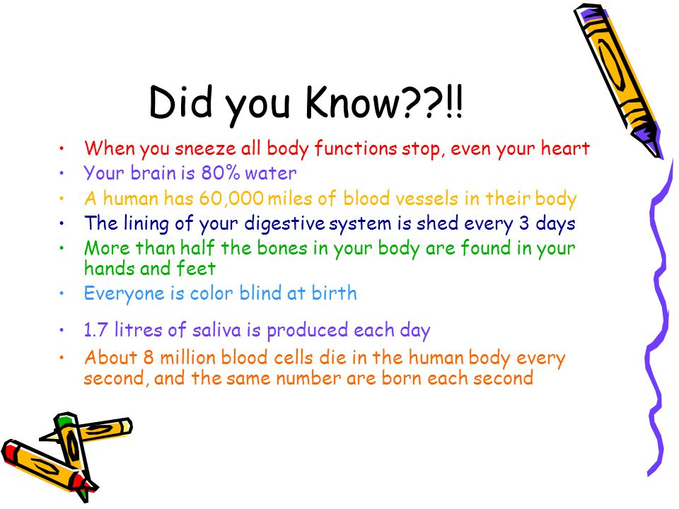 Did you Know !! When you sneeze all body functions stop, even your heart. Your brain is 80% water.
