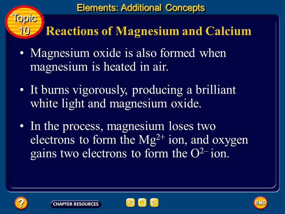 Reactions of Magnesium and Calcium