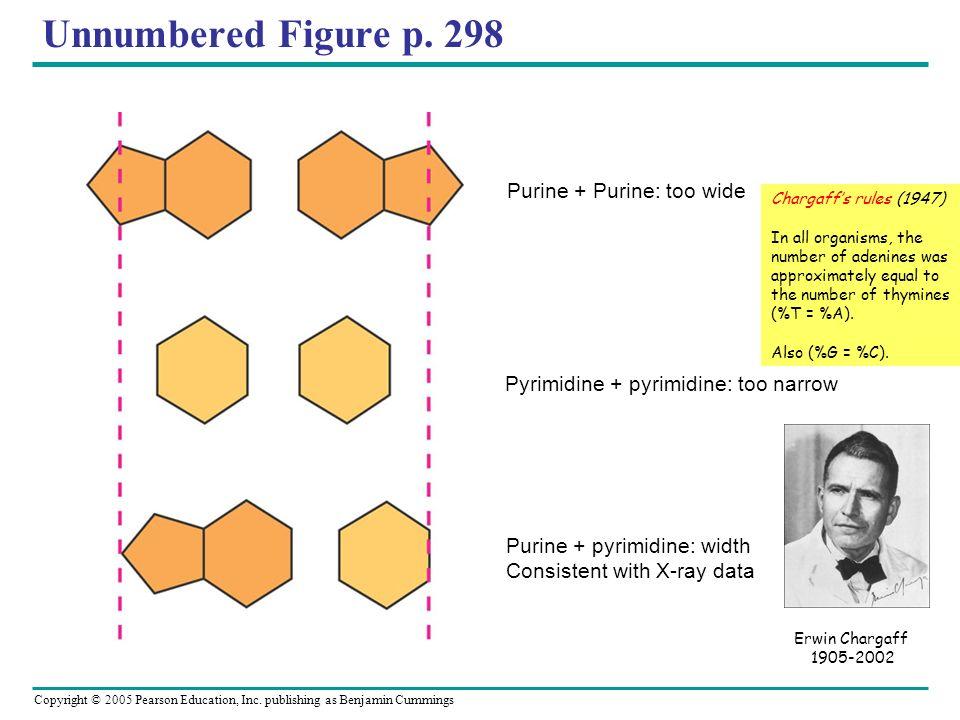 Unnumbered Figure p. 298 Purine + Purine: too wide