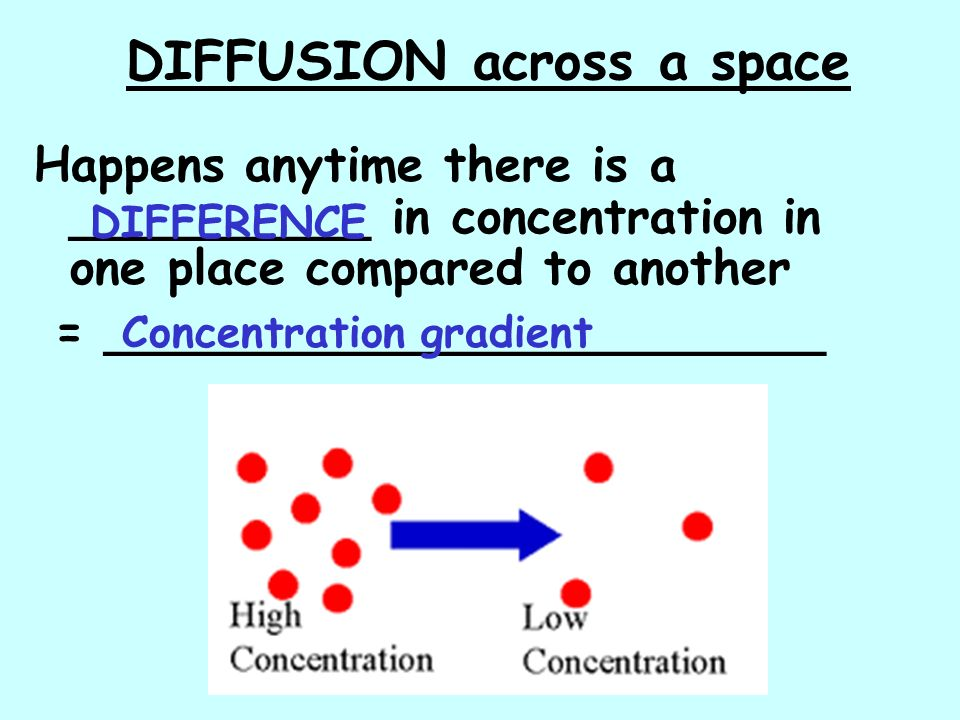 DIFFUSION across a space