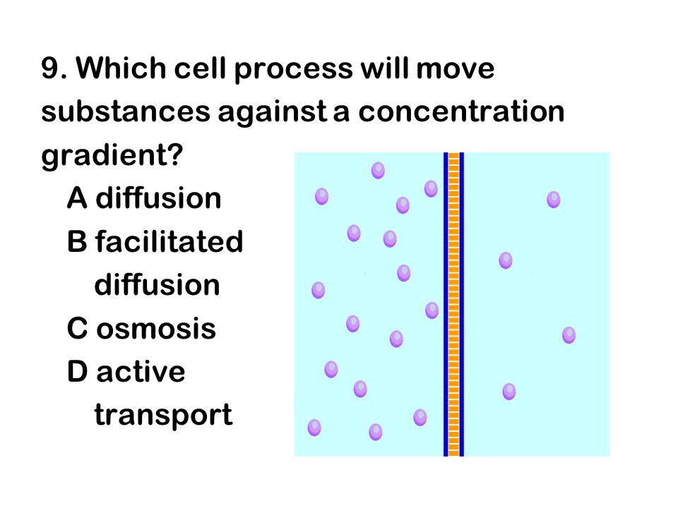 9. Which cell process will move