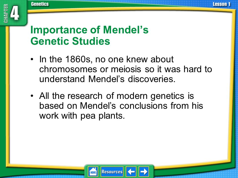 Importance of Mendel's Genetic Studies