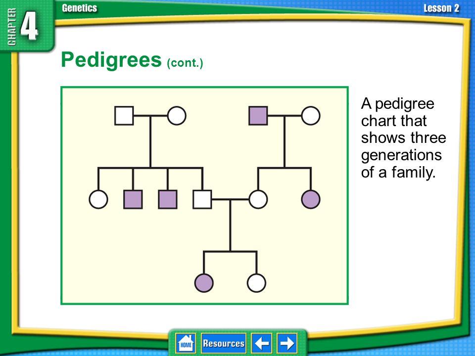 4.2 Understanding Inheritance