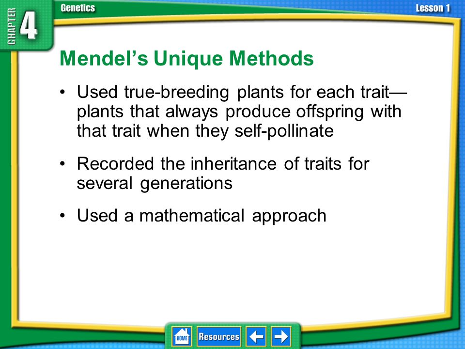 Mendel's Unique Methods