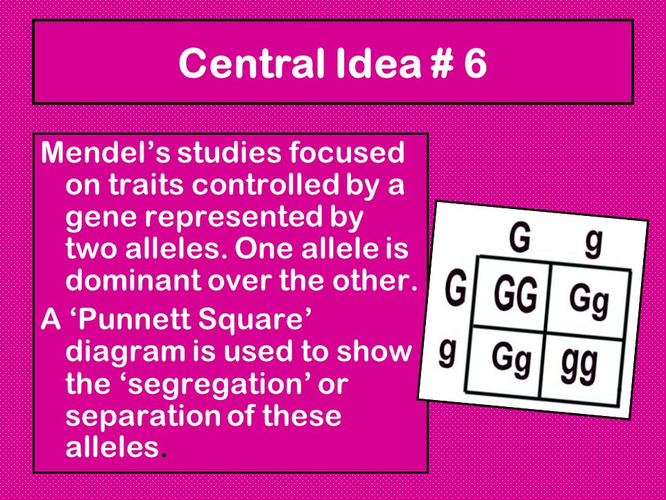 Central Idea # 6 Mendel's studies focused on traits controlled by a gene represented by two alleles. One allele is dominant over the other.