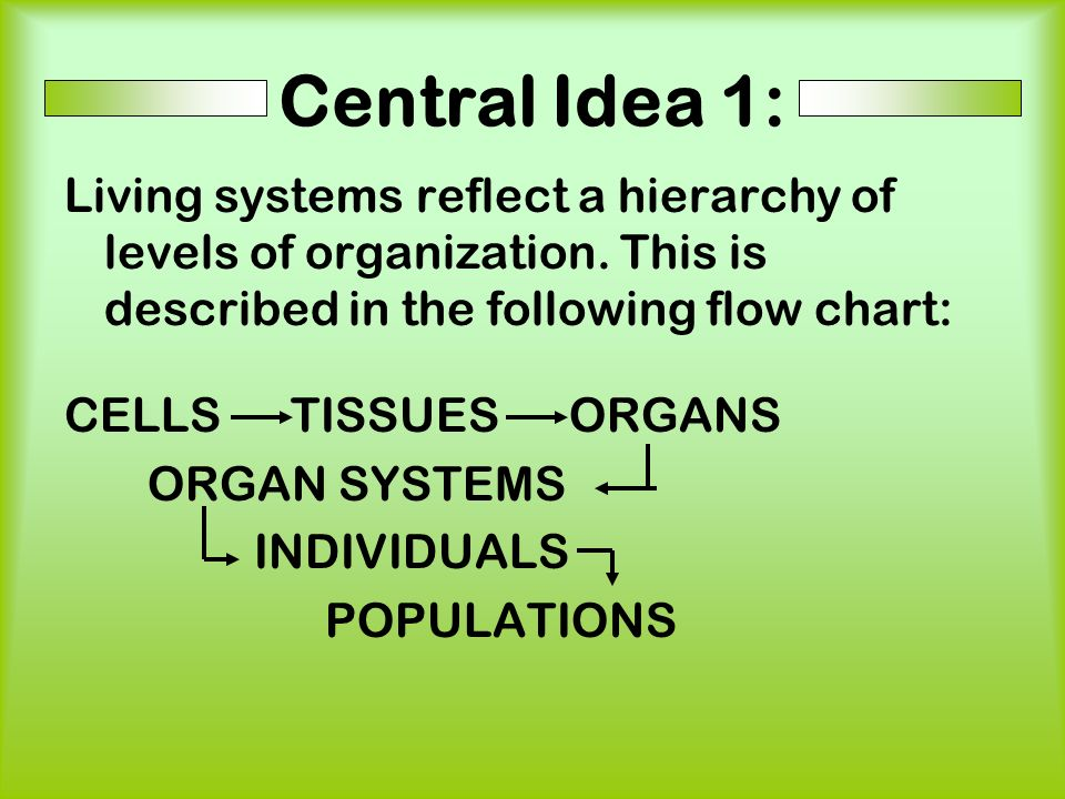 Central Idea 1: Living systems reflect a hierarchy of levels of organization. This is described in the following flow chart: