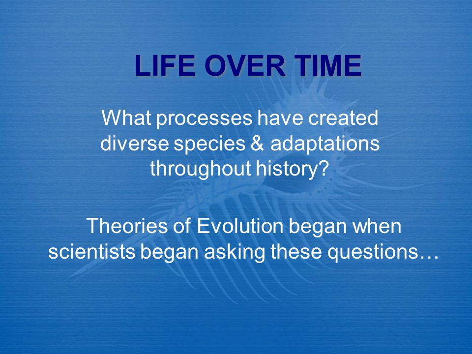 LIFE OVER TIME What processes have created diverse species & adaptations throughout history
