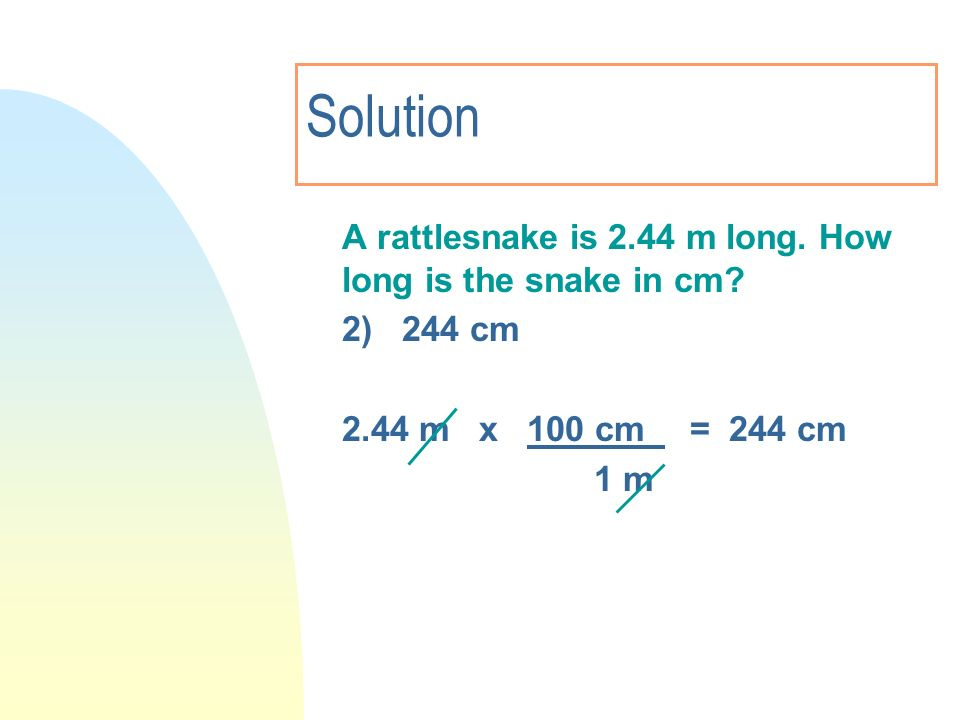 Solution A rattlesnake is 2.44 m long. How long is the snake in cm
