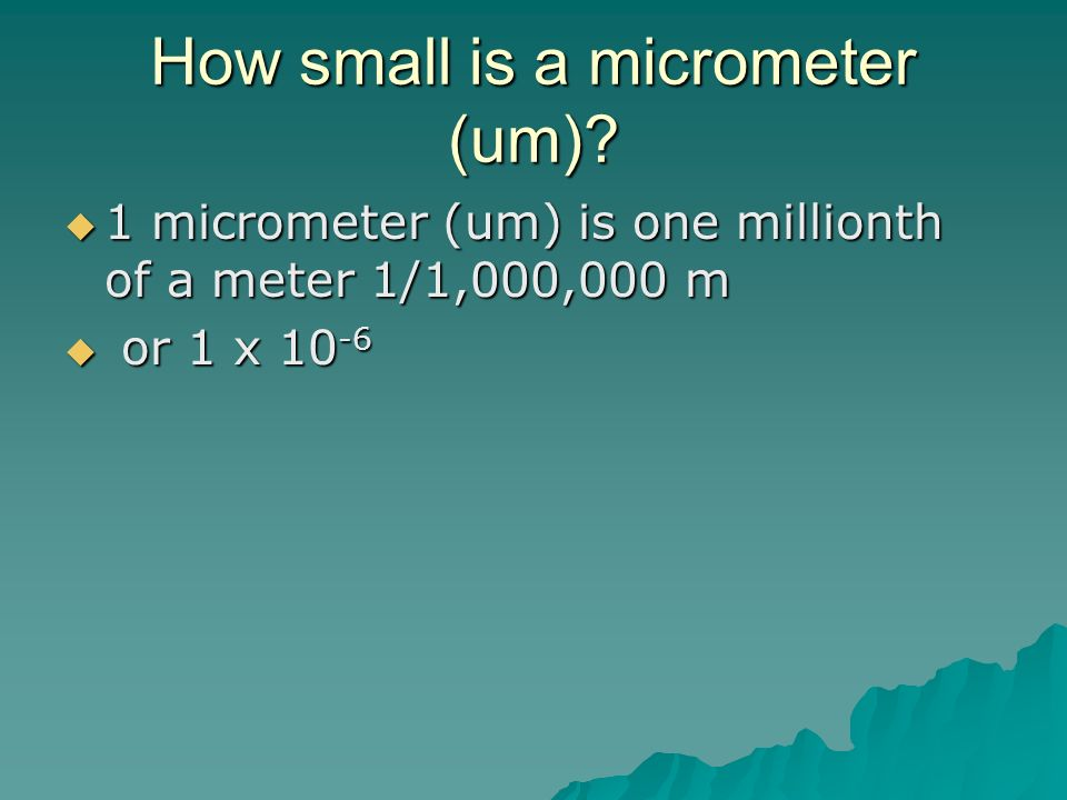 How small is a micrometer (um)