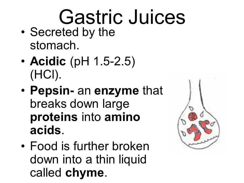 Gastric Juices Secreted by the stomach. Acidic (pH 1.5-2.5) (HCl).