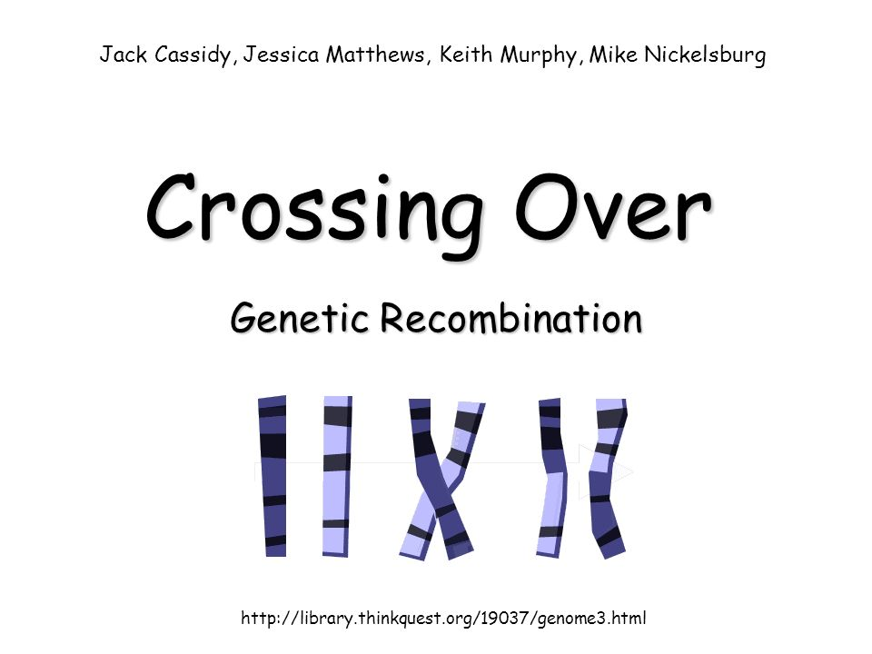 Genetic recombination biology