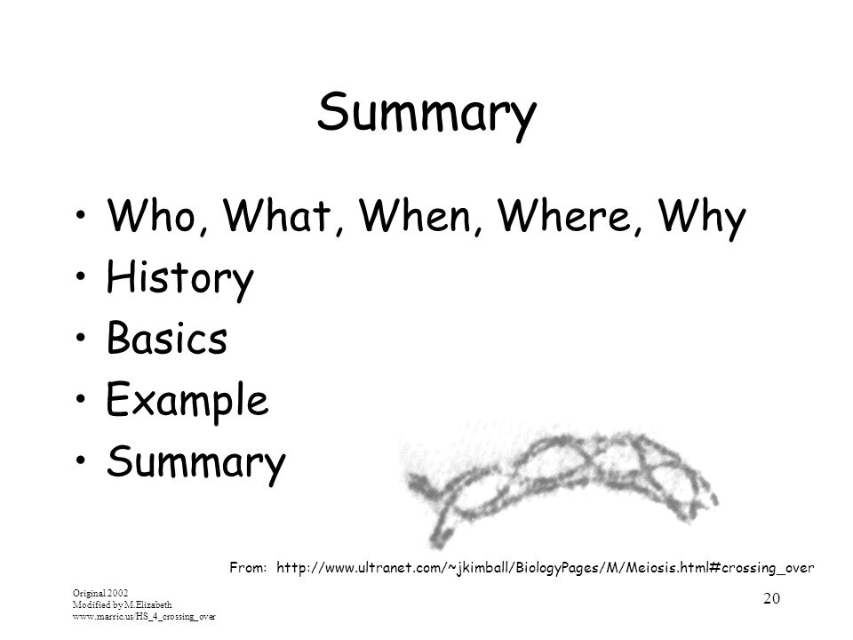 Summary Who, What, When, Where, Why History Basics Example Summary