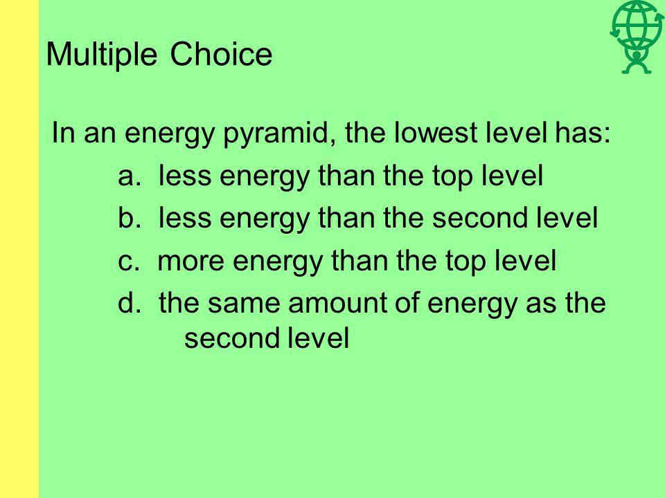 Multiple Choice In an energy pyramid, the lowest level has: