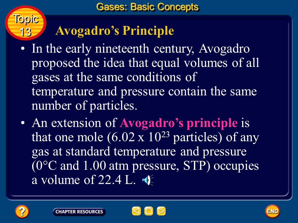 Gases: Basic Concepts Topic. 13. Avogadro's Principle.