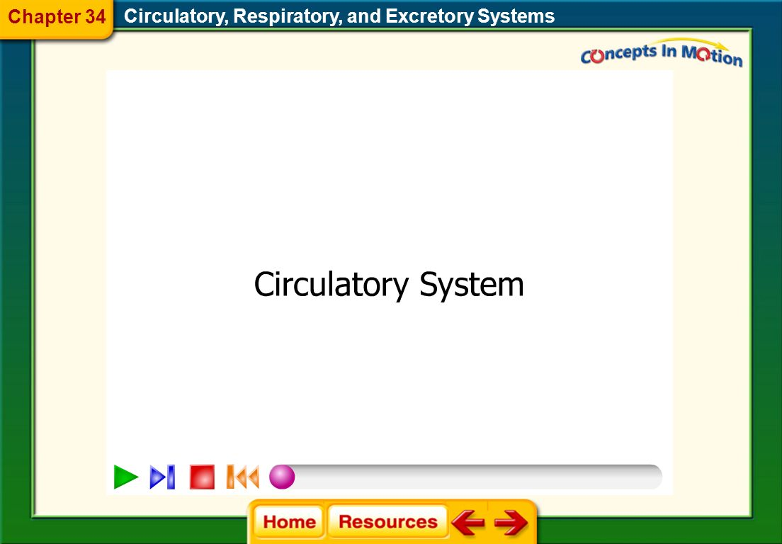 Chapter 34 Circulatory, Respiratory, and Excretory Systems