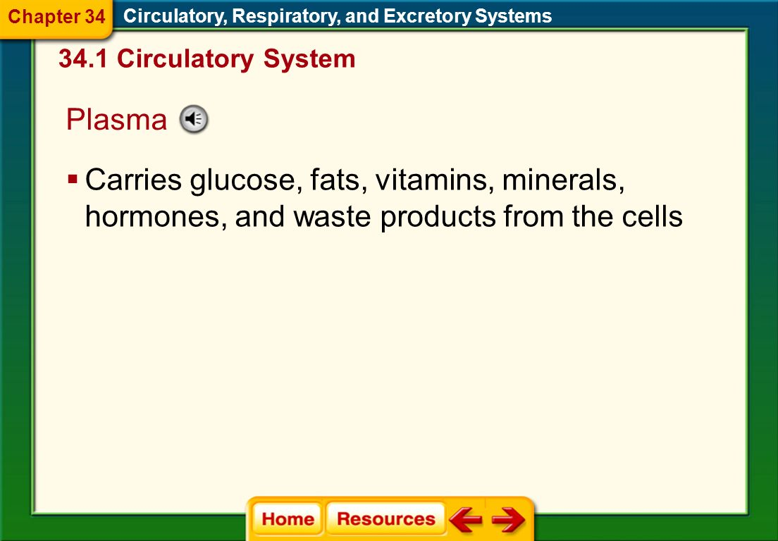 Chapter 34 Circulatory, Respiratory, and Excretory Systems Circulatory System. Plasma.